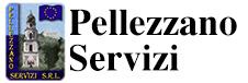 Pellezzano Servizi srl